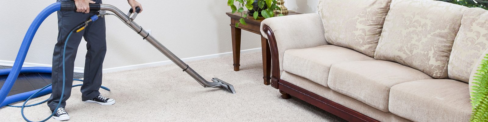 Carpet Cleaning Laa Niguel Steam Professional Cleaners