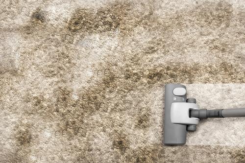 4 Dangers of DIY Carpet Cleaning