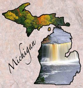 Michigan Carpet Cleaning