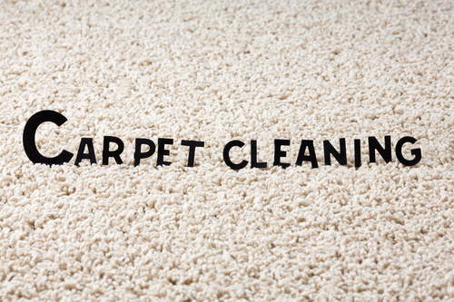 8 Steps to Prepare Your Home for Professional Carpet Cleaning